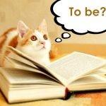 【漫然と読んでない?】一流を目指す人が意識すべき、読書の3つの方向性